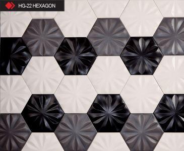 HG-22 Hexagon karo modeli