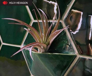 HG-31 Hexagon yeşil karo