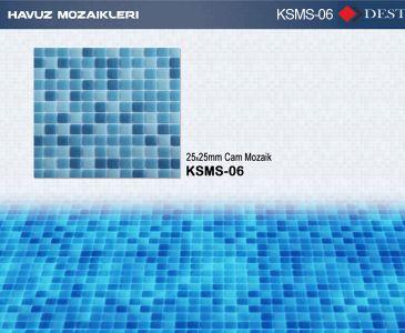 KSMS-06